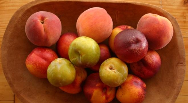 Goldbud Peaches2